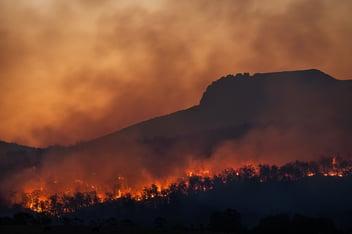 A series of major bush fires on a mountain