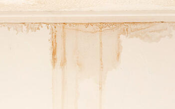 Paint damage along the ceiling of a basement, indicating serious water damage