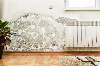 A water damaged home, resulting in mold