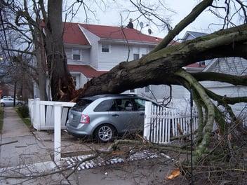 A fallen tree causes damage to a Pensacola home.