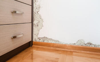 The corner of a room where mold has begun to spread from the floor and walls