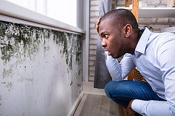A West Palm Beach man discovers mold in his home.