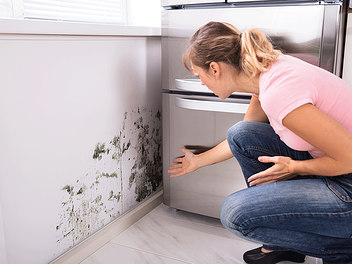 A woman discovers mold growing on her wall.