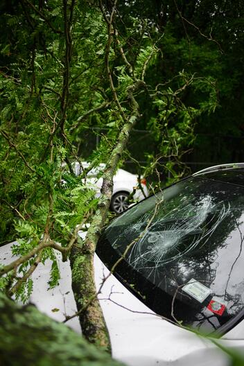 A car with a smashed windshield after a storm