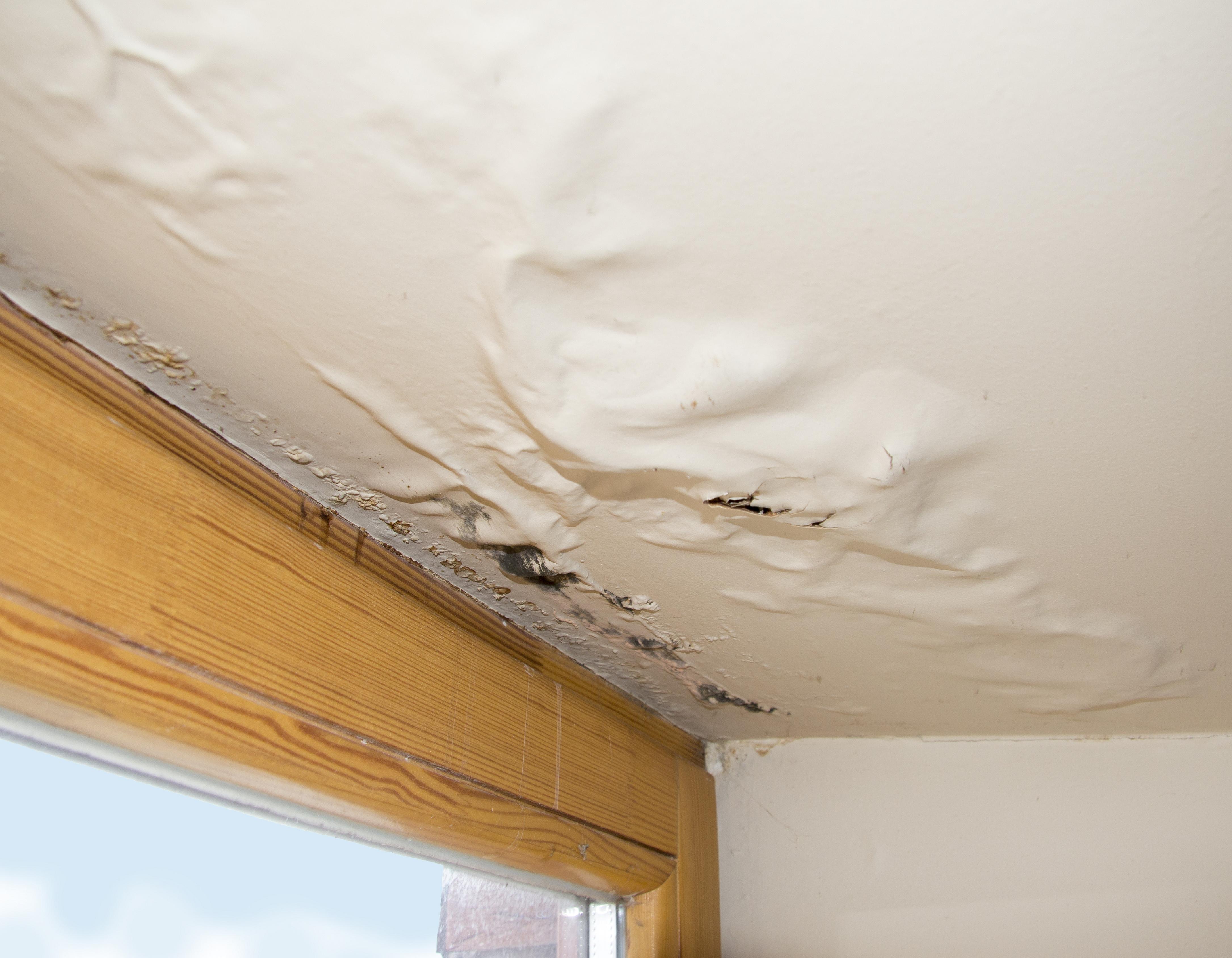 roof leak 3